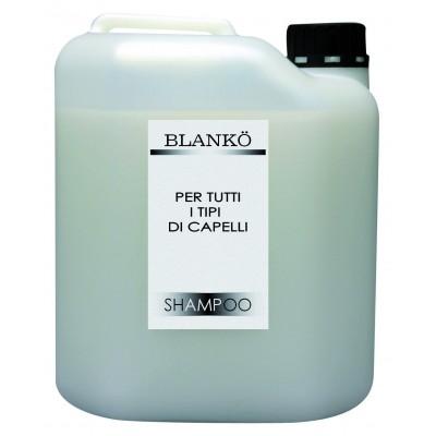 Shampoo Menta 10 LT - Blankö